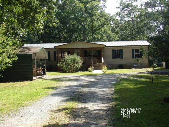 11265 Tails Creek Road, Ellijay, GA 30540 (MLS #6059713) :: The Justin Landis Group