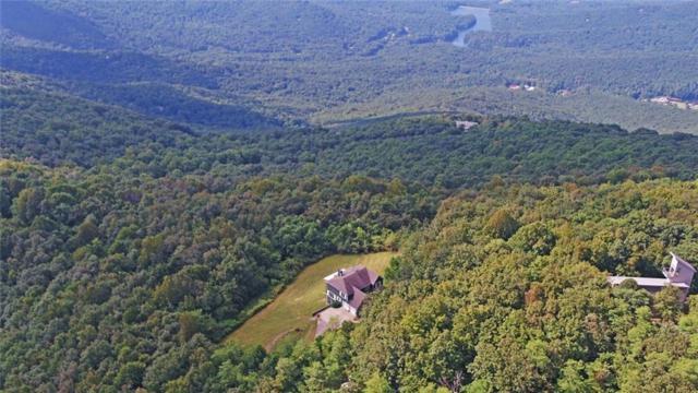 111 Sassafras Mountain Top Lane, Jasper, GA 30143 (MLS #6076047) :: The Hinsons - Mike Hinson & Harriet Hinson