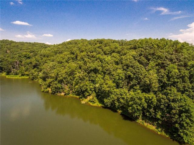 Lot 6 Meadowlands Drive, Talking Rock, GA 30175 (MLS #6087928) :: The Hinsons - Mike Hinson & Harriet Hinson