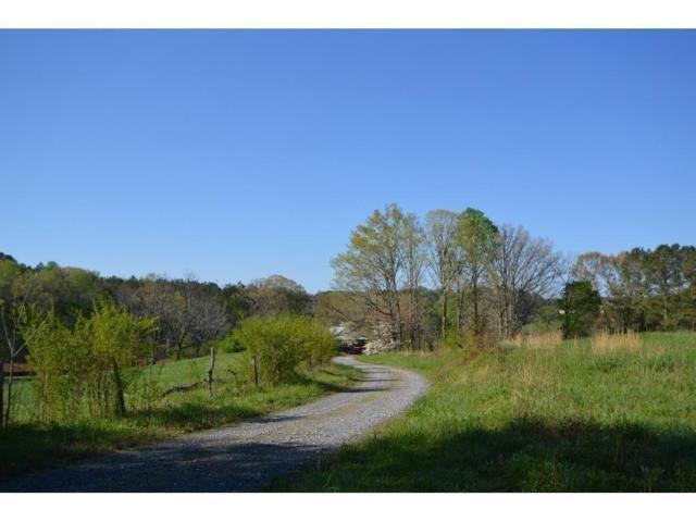 TRT 2 Dean Trail, Talking Rock, GA 30175 (MLS #6090468) :: Ashton Taylor Realty