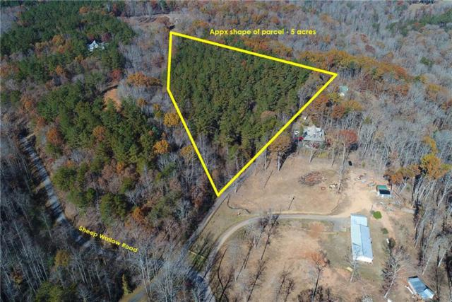 0 Sheep Wallow Road, Dahlonega, GA 30533 (MLS #6102177) :: Hollingsworth & Company Real Estate