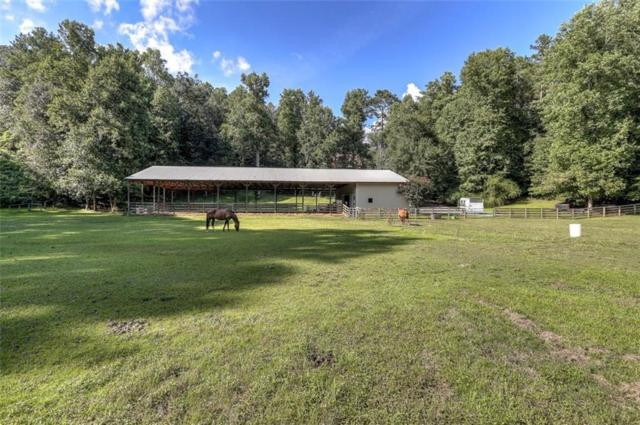 301 Mcgarity Road, Canton, GA 30115 (MLS #6513318) :: Iconic Living Real Estate Professionals