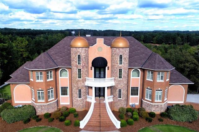 115 Lion Drive, Bremen, GA 30110 (MLS #6531854) :: North Atlanta Home Team