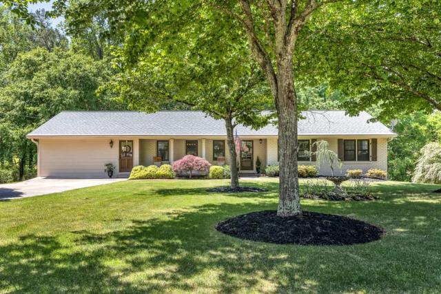 324 Meadow Drive, Alpharetta, GA 30009 (MLS #6547294) :: Iconic Living Real Estate Professionals