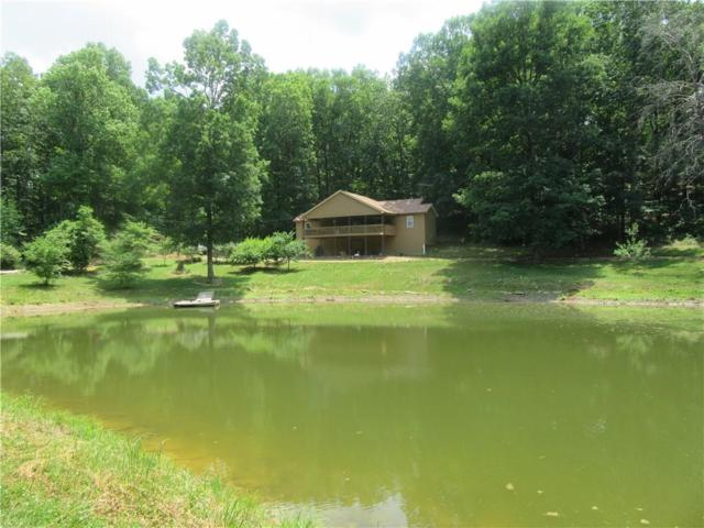 2022 Pettit Road, Jasper, GA 30143 (MLS #6551083) :: Path & Post Real Estate