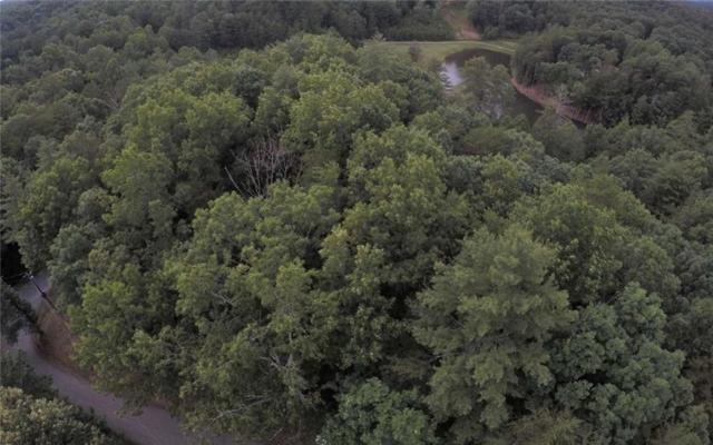 0 Cherokee Drive, Ellijay, GA 30540 (MLS #6567922) :: Ashton Taylor Realty
