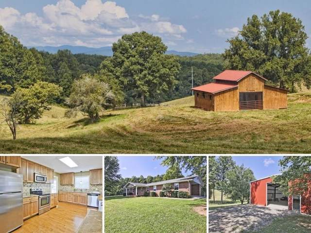131 Hilltop View, Blairsville, GA 30512 (MLS #6598639) :: The Zac Team @ RE/MAX Metro Atlanta