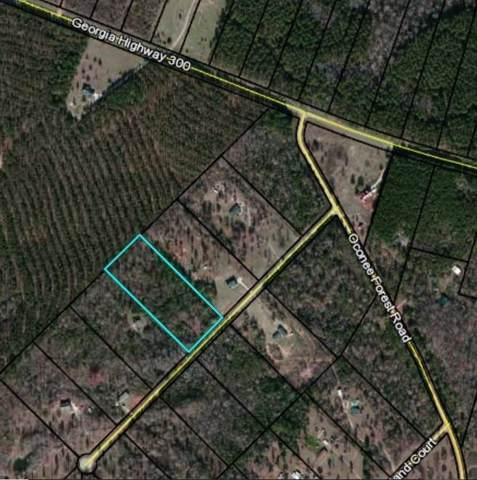 0 Eagle View Drive, Monticello, GA 31064 (MLS #6621899) :: North Atlanta Home Team