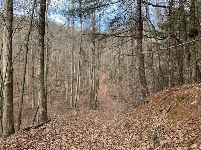 0 Paramount Trail, Ellijay, GA 30536 (MLS #6663127) :: Todd Lemoine Team