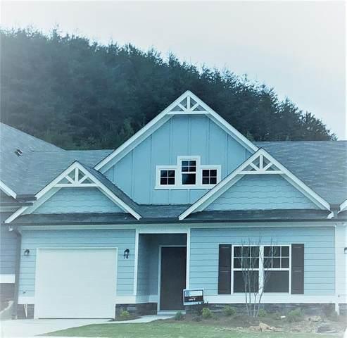74 Sanctuary Place, Jasper, GA 30143 (MLS #6670257) :: Path & Post Real Estate