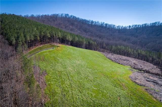 1 B Serenity Mountain View, Talking Rock, GA 30175 (MLS #6680192) :: Dillard and Company Realty Group