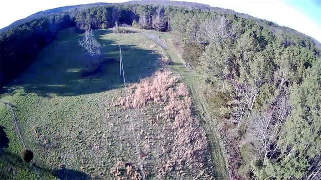0 Plainview Road, Adairsville, GA 30103 (MLS #6691167) :: Kennesaw Life Real Estate