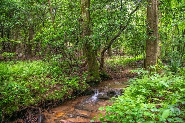 342 Wild Pansy Circle, Big Canoe, GA 30143 (MLS #6728489) :: The Hinsons - Mike Hinson & Harriet Hinson