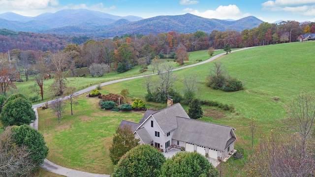 208 Rich Drive, Blairsville, GA 30512 (MLS #6758175) :: The Cowan Connection Team