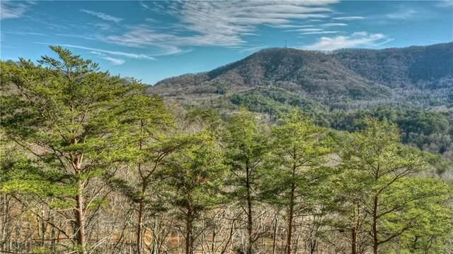 4 55 Clearview Mountain Road, Blue Ridge, GA 30513 (MLS #6816373) :: North Atlanta Home Team