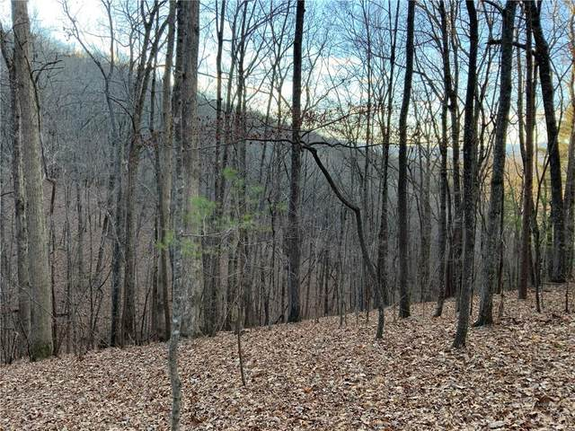 J348 Mountain View Court, Ellijay, GA 30536 (MLS #6828417) :: Rock River Realty