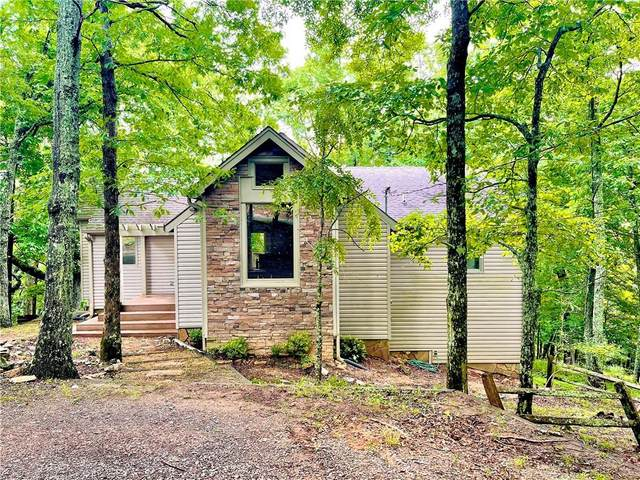 1401 Little Hendricks Mountain Road, Jasper, GA 30143 (MLS #6831779) :: Kennesaw Life Real Estate
