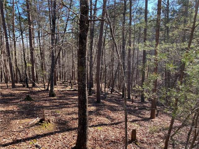 64 Placer Mining Road, Dahlonega, GA 30533 (MLS #6860725) :: The Heyl Group at Keller Williams