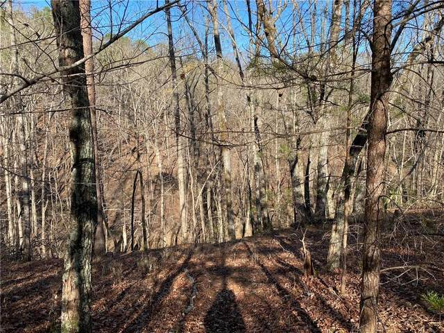 66 Placer Mining Road, Dahlonega, GA 30533 (MLS #6860731) :: The Heyl Group at Keller Williams