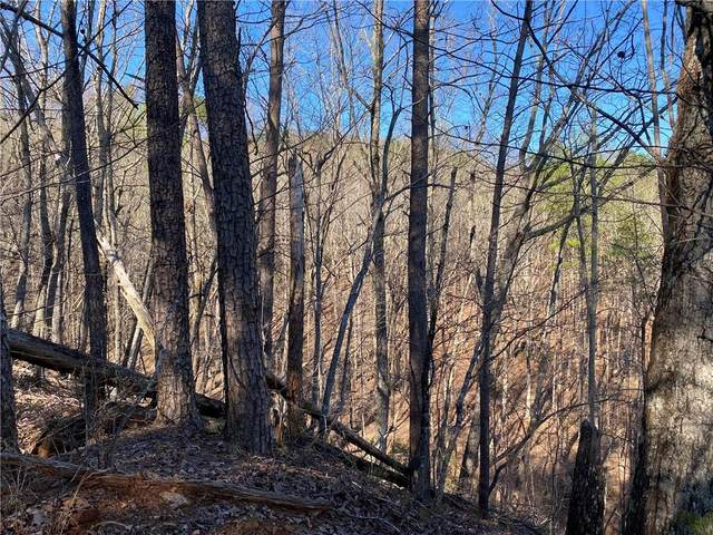 67 Placer Mining Road, Dahlonega, GA 30533 (MLS #6860735) :: The Heyl Group at Keller Williams