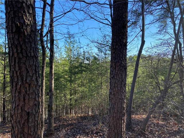 68 Placer Mining Road, Dahlonega, GA 30533 (MLS #6860737) :: The Heyl Group at Keller Williams
