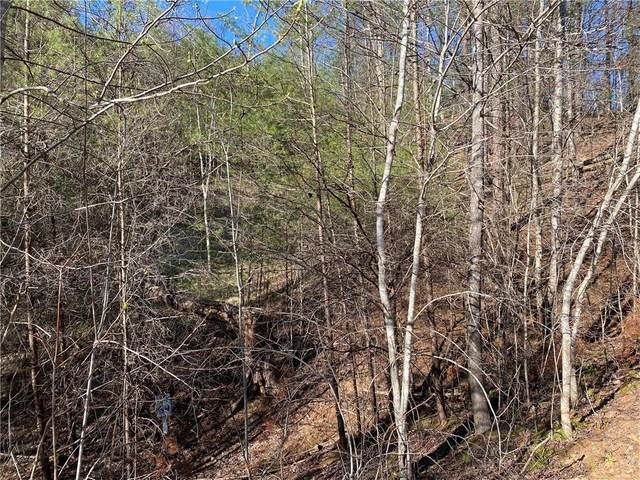 69 Placer Mining Road, Dahlonega, GA 30533 (MLS #6860739) :: The Heyl Group at Keller Williams