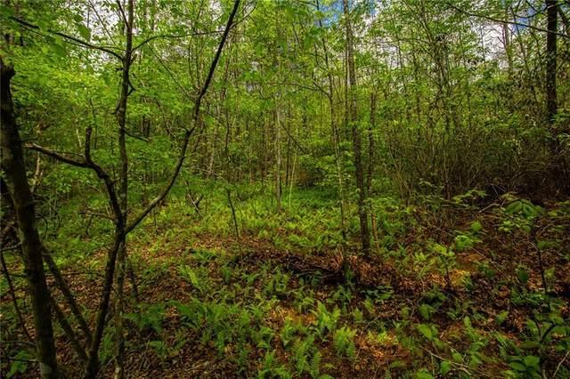 Trct B Antioch Church Road, Dawsonville, GA 30534 (MLS #6874919) :: Path & Post Real Estate
