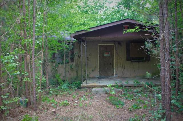 128 Liz Acres Road, Barnesville, GA 30204 (MLS #6880780) :: 515 Life Real Estate Company