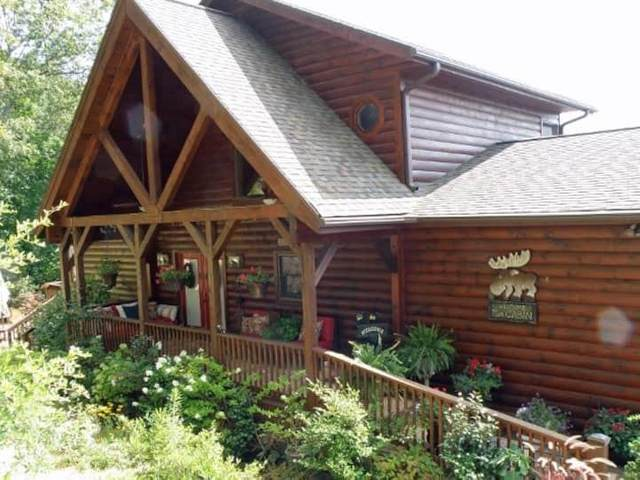 612 Monument Falls Road, Jasper, GA 30143 (MLS #6881175) :: Dillard and Company Realty Group