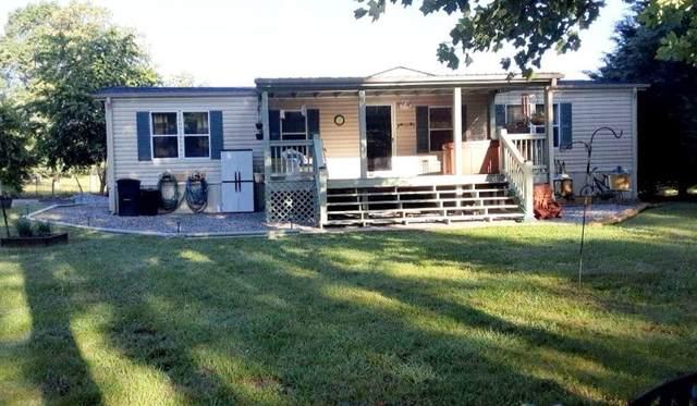 567 Seabolt Lane, Blairsville, GA 30512 (MLS #6901459) :: North Atlanta Home Team