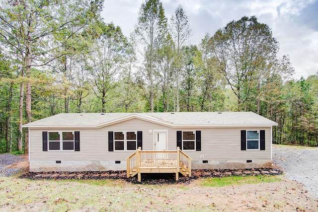 142 Timber Fern Drive, Ellijay, GA 30540 (MLS #6927780) :: Virtual Properties Realty