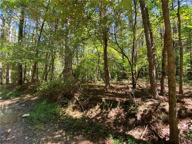Lot 2 Mineral Springs Road, Ball Ground, GA 30107 (MLS #6943499) :: Maria Sims Group