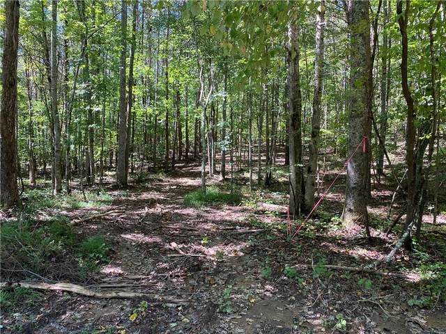 Lot 17 Mineral Springs Road, Ball Ground, GA 30107 (MLS #6943577) :: Maria Sims Group