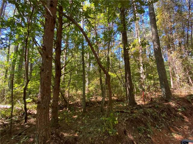 Lot 21 Mineral Springs Road, Ball Ground, GA 30107 (MLS #6943587) :: Maria Sims Group