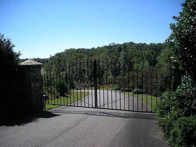 916 Cove Lake Drive, Marble Hill, GA 30148 (MLS #5357691) :: Hollingsworth & Company Real Estate