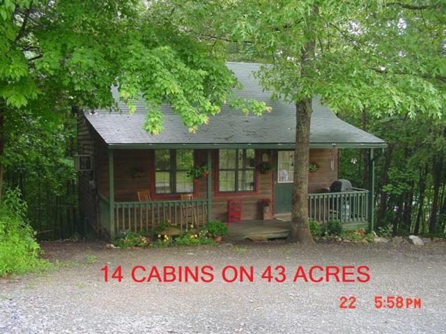 159 Back Pine Way, Ellijay, GA 30536 (MLS #5879815) :: North Atlanta Home Team