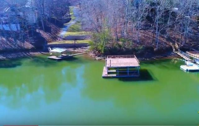 Lot 7 Chestatee View Drive, Dawsonville, GA 30534 (MLS #5958519) :: Iconic Living Real Estate Professionals