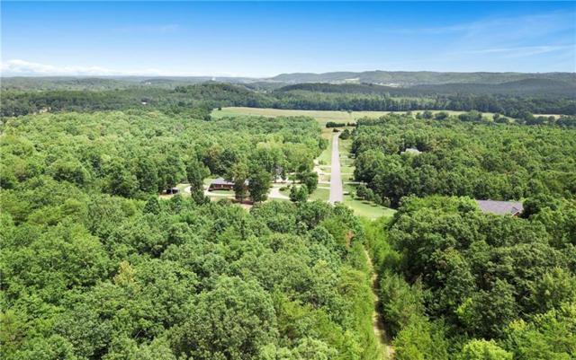 42 E Heritage Drive NE, Rydal, GA 30171 (MLS #6028887) :: RE/MAX Paramount Properties