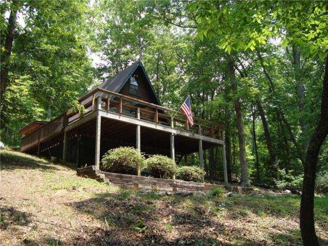 16 Lake Front Drive, Morganton, GA 30560 (MLS #6071320) :: The Cowan Connection Team