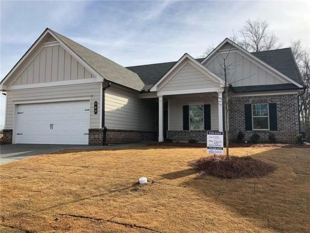 383 Brighton Park Circle, Hoschton, GA 30548 (MLS #6086553) :: The Cowan Connection Team