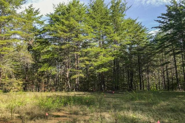 Lot 61 Chesterra Drive, Dahlonega, GA 30533 (MLS #6088895) :: The Cowan Connection Team