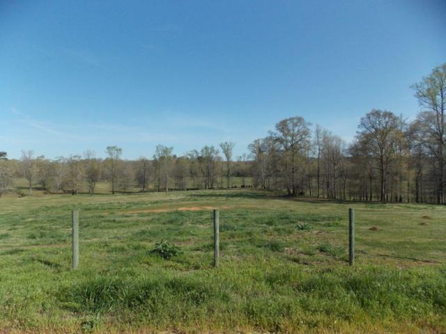 587 Diamond Hill Church Road, Maysville, GA 30558 (MLS #6107096) :: Iconic Living Real Estate Professionals