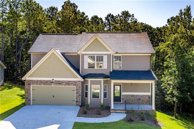 705 Great Oak Place, Villa Rica, GA 30180 (MLS #6126793) :: North Atlanta Home Team