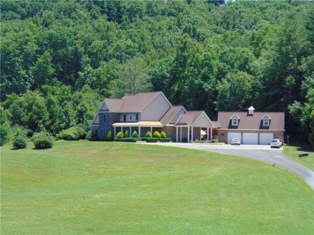 718 Hidden Lake Road, Blairsville, GA 30512 (MLS #6565539) :: North Atlanta Home Team