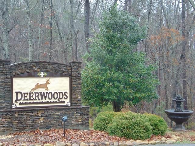 14 Twin Fawns Trail, Dahlonega, GA 30533 (MLS #6618782) :: The Heyl Group at Keller Williams