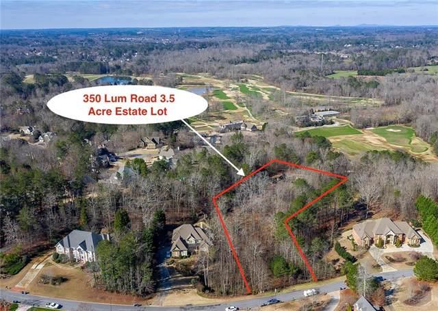 350 Lum Crowe Road, Roswell, GA 30075 (MLS #6682554) :: The Heyl Group at Keller Williams