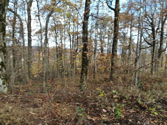 0 Burnt Mountain Cove Road, Dawsonville, GA 30534 (MLS #6692880) :: Good Living Real Estate