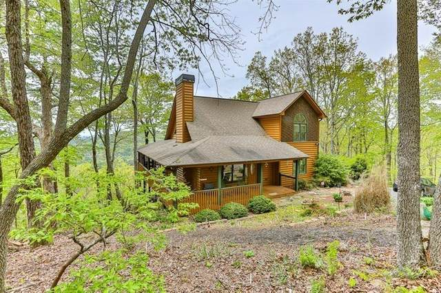 354 Owl Mountain Lane, Ellijay, GA 30536 (MLS #6715064) :: North Atlanta Home Team