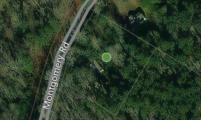 1312 Montgomery Road, Greenville, GA 30222 (MLS #6948283) :: North Atlanta Home Team