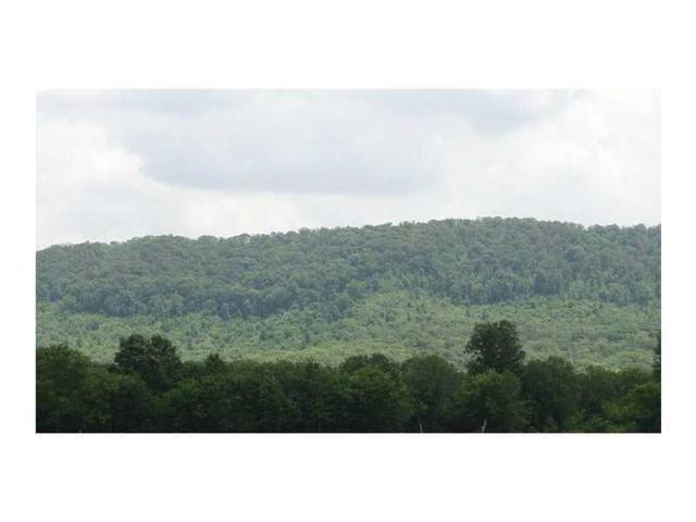 0 Hackett Mill Road, Ringgold, GA 30736 (MLS #5261533) :: RE/MAX Paramount Properties